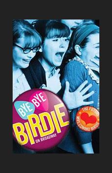 Bye Bye Birdie, Stephen Sondheim Theatre, NYC Show Poster