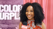 The Broadway.com Show: Meet the Cast of The Color Purple National Tour