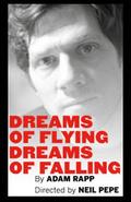 Dreams of Flying Dreams of Falling