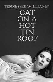 Cat On A Hot Tin Roof Broadway Tickets Broadway