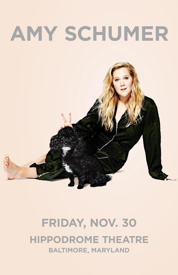 Poster for Amy Schumer's Fall Tour