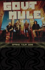 Poster for Gov't Mule