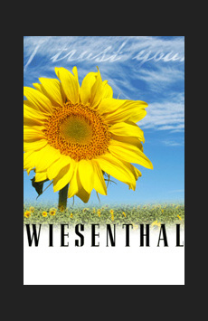 Wiesenthal, Theatre Row/Acorn Theatre, NYC Show Poster