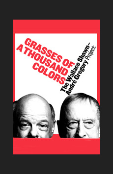 Grasses of a Thousand Colors, Joseph Papp Public Theater/Shiva Theater, NYC Show Poster