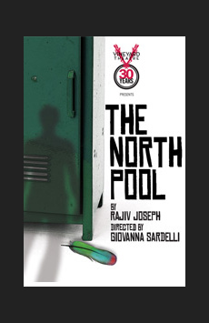 The North Pool, Vineyard Theatre, NYC Show Poster