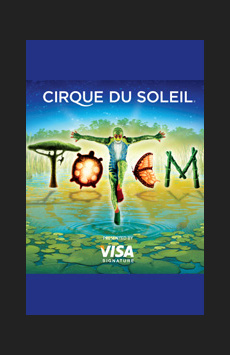 Cirque du Soleil's Totem, Citi Field, NYC Show Poster