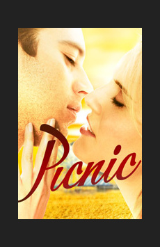 Picnic,, NYC Show Poster