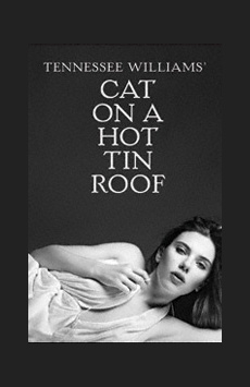 Cat on a Hot Tin Roof, Richard Rodgers Theatre, NYC Show Poster