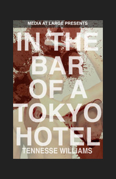 In the Bar of a Tokyo Hotel, New World Stages - Stage Five, NYC Show Poster
