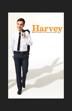 Harvey, Studio 54, NYC Show Poster
