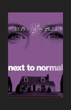 Next to Normal , Booth Theatre, NYC Show Poster