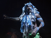 Quentin Earl Darrington as Agwe in Once On This Island.
