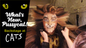 What's New, Pussycat? Backstage at Cats with Tyler Hanes, Ep 11: Farewell to Some Felines