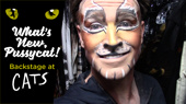 Backstage at Cats with Tyler Hanes, Ep 13: Costumes & Cake